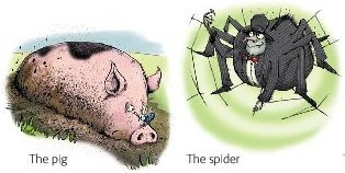 the pig and the spider.