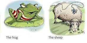 the frog and the sheep.